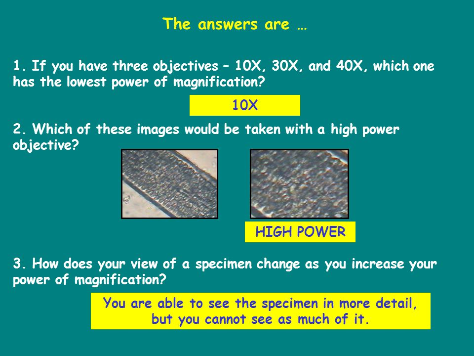 1. If you have three objectives – 10X, 30X, and 40X, which one has the lowest power of magnification? 2. Which of these images would be taken with a h