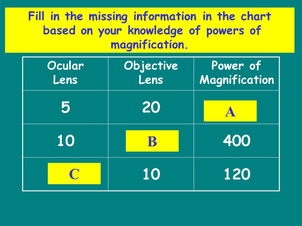 Fill in the missing information in the chart based on your knowledge of powers of magnification. Ocular Lens Objective Lens Power of Magnification 520