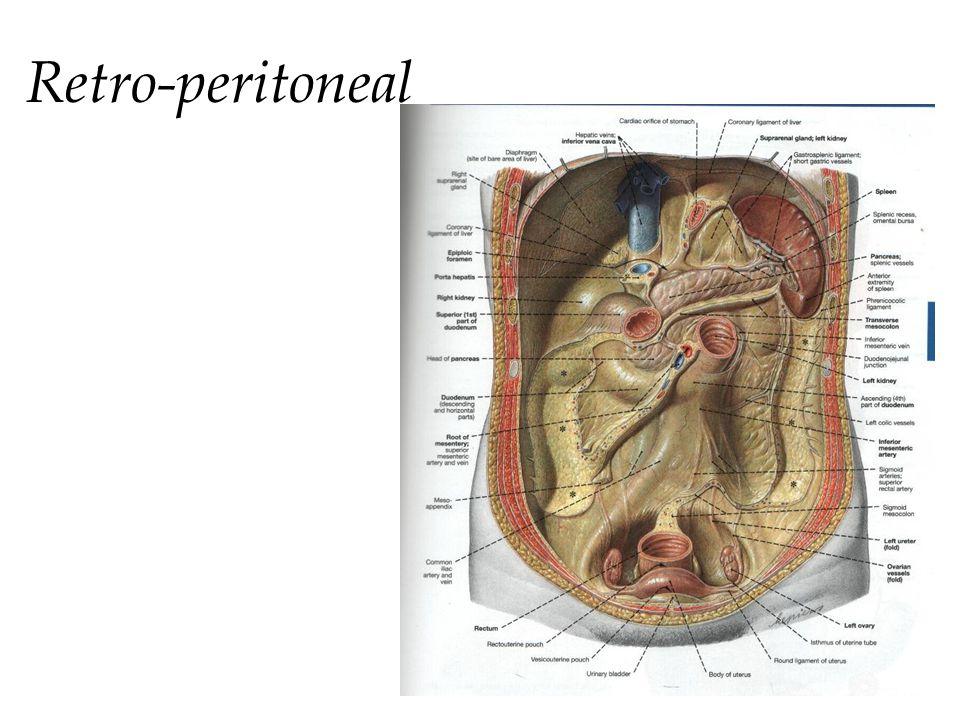 Retro-peritoneal