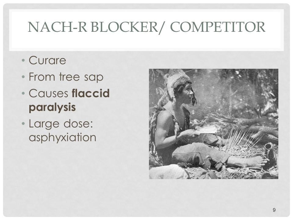 NACH-R BLOCKER/ COMPETITOR South American Indians use curare as a poison on the tips of arrows.
