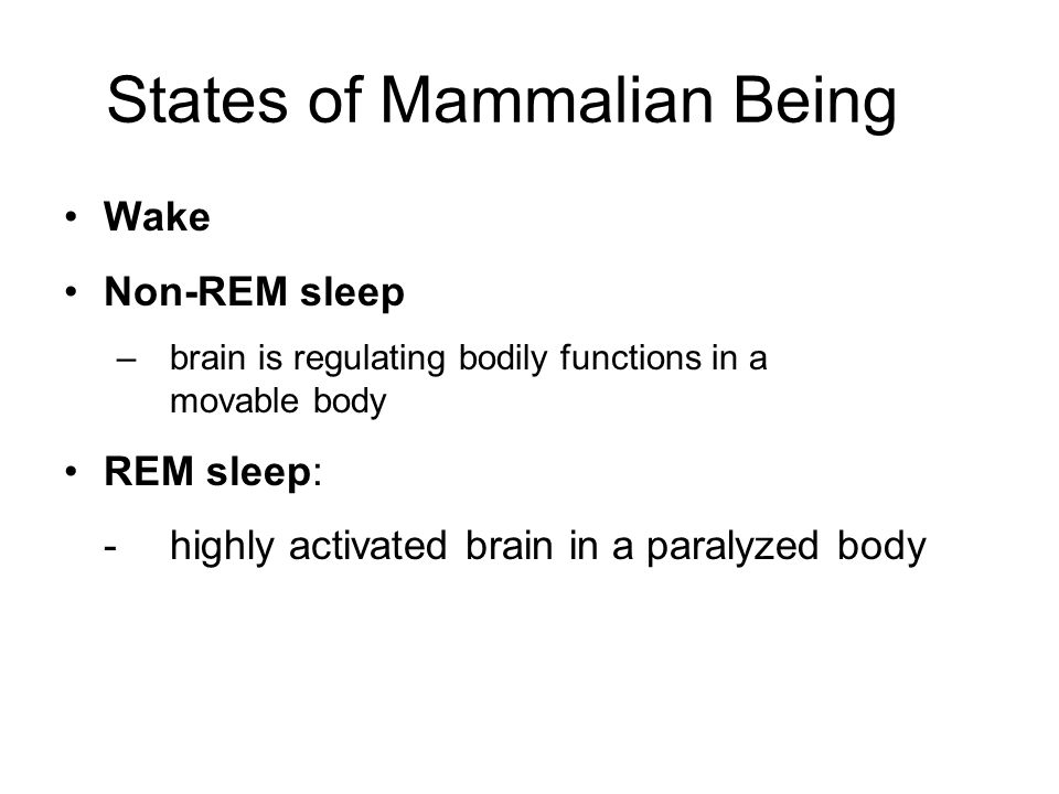 States of Mammalian Being Wake Non-REM sleep –brain is regulating bodily functions in a movable body REM sleep: -highly activated brain in a paralyzed