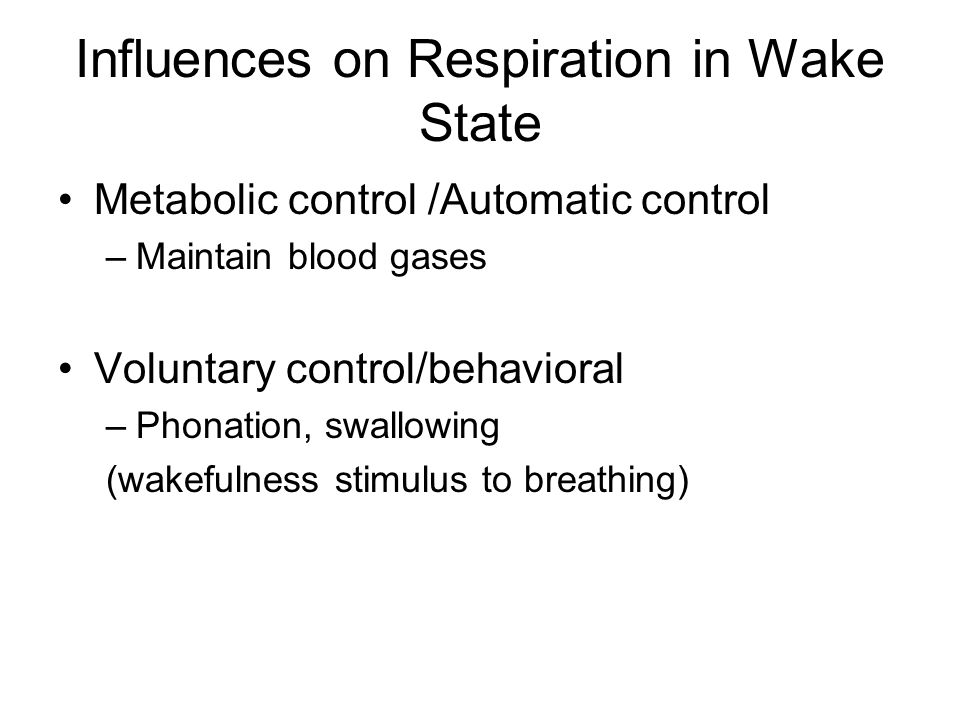 Influences on Respiration in Wake State Metabolic control /Automatic control –Maintain blood gases Voluntary control/behavioral –Phonation, swallowing (wakefulness stimulus to breathing)