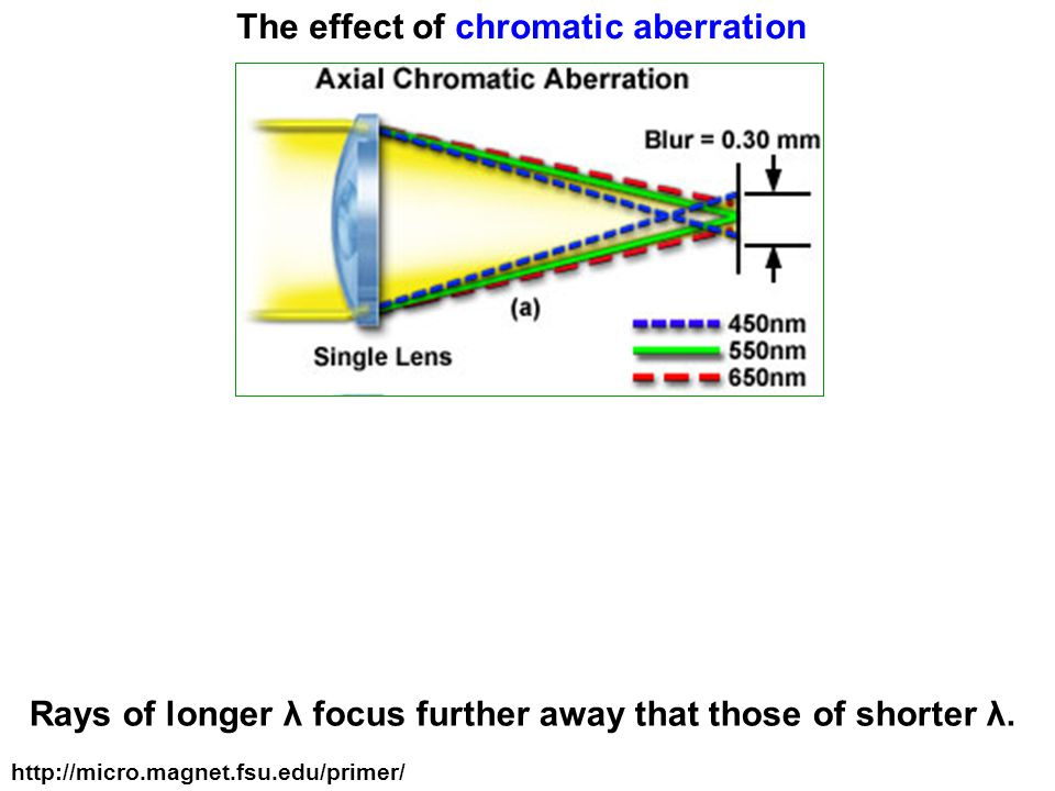 The effect of chromatic aberration Rays of longer λ focus further away that those of shorter λ.
