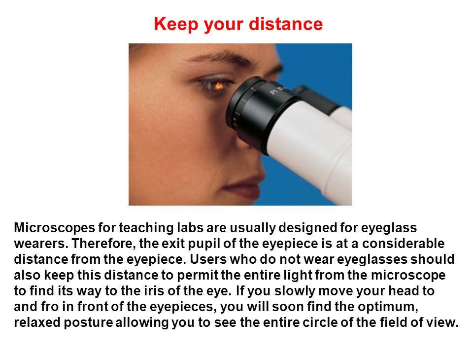 Keep your distance Microscopes for teaching labs are usually designed for eyeglass wearers.