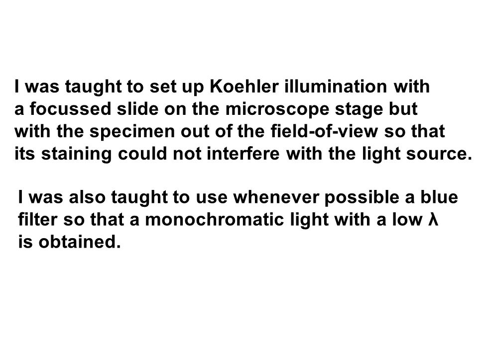 I was taught to set up Koehler illumination with a focussed slide on the microscope stage but with the specimen out of the field-of-view so that its staining could not interfere with the light source.