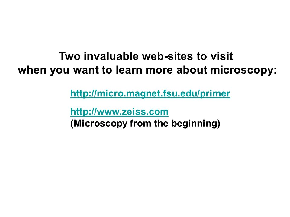 http://micro.magnet.fsu.edu/primer Two invaluable web-sites to visit when you want to learn more about microscopy: http://www.zeiss.com (Microscopy from the beginning)