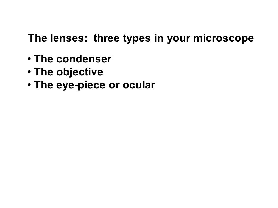 The lenses: three types in your microscope The condenser The objective The eye-piece or ocular