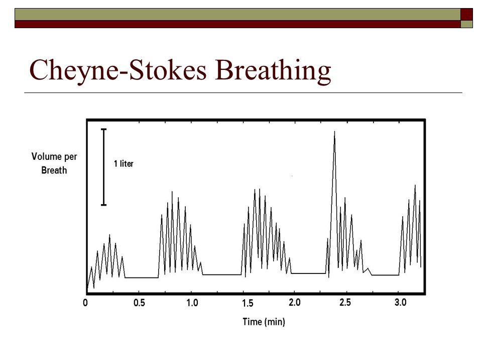 Cheyne-Stokes Breathing