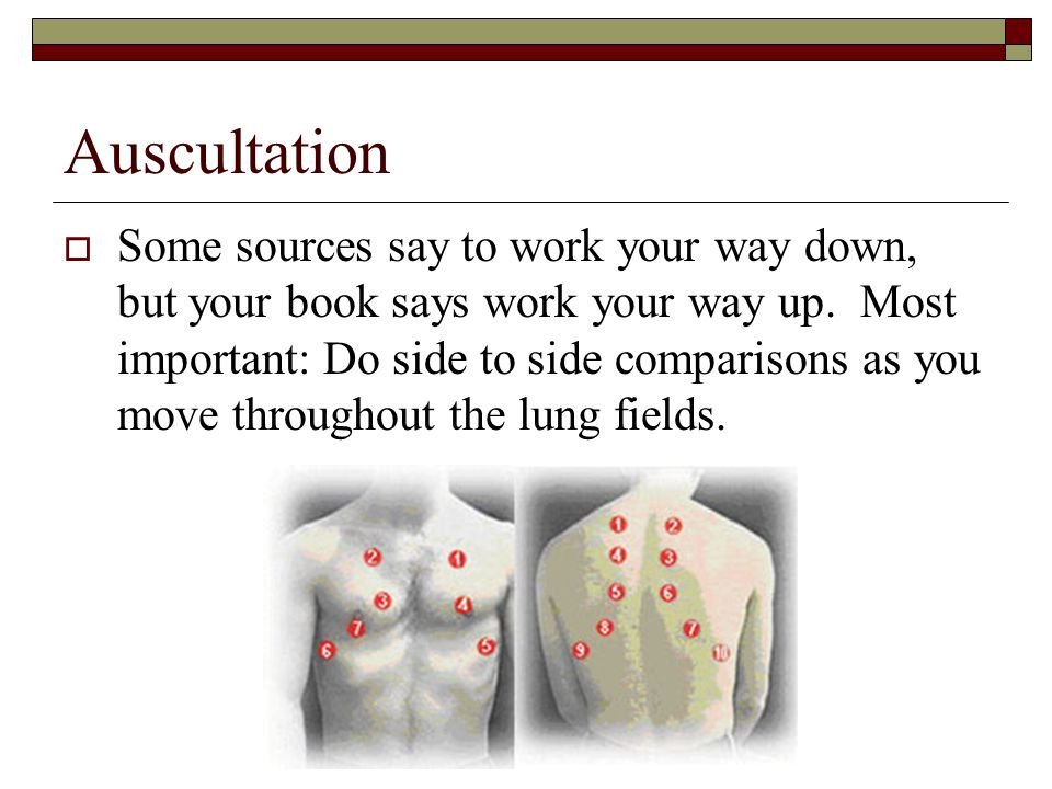 Auscultation  Some sources say to work your way down, but your book says work your way up. Most important: Do side to side comparisons as you move th