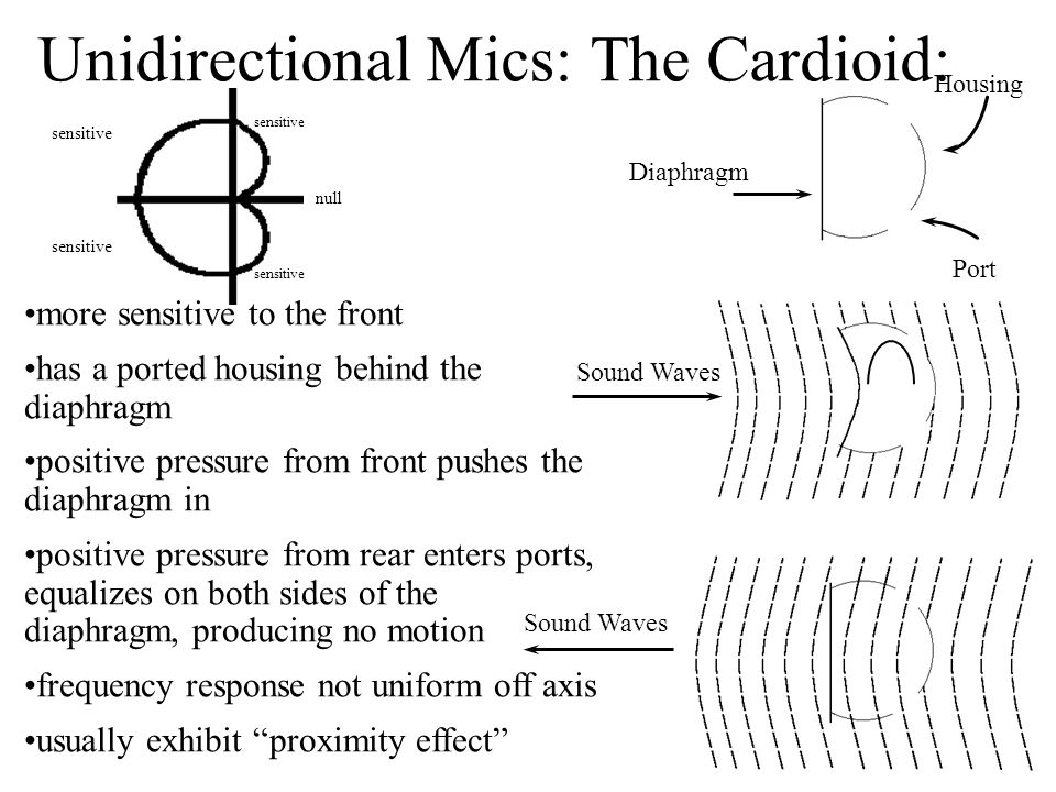 more sensitive to the front has a ported housing behind the diaphragm positive pressure from front pushes the diaphragm in positive pressure from rear enters ports, equalizes on both sides of the diaphragm, producing no motion frequency response not uniform off axis usually exhibit proximity effect Housing Diaphragm Port Sound Waves Unidirectional Mics: The Cardioid: sensitive null