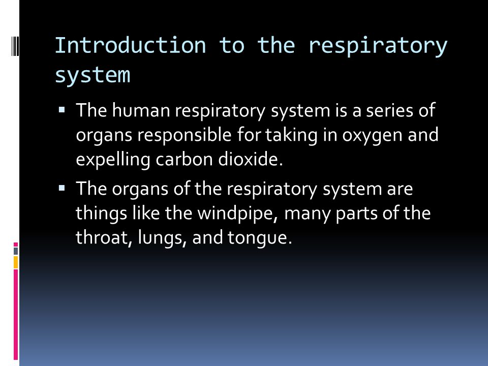 Introduction to the respiratory system  The human respiratory system is a series of organs responsible for taking in oxygen and expelling carbon dioxide.