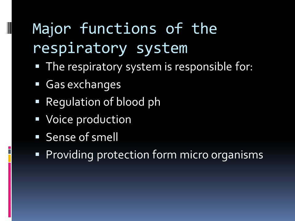Ma j or functions of the respiratory system  The respiratory system is responsible for:  Gas exchanges  Regulation of blood ph  Voice production  Sense of smell  Providing protection form micro organisms