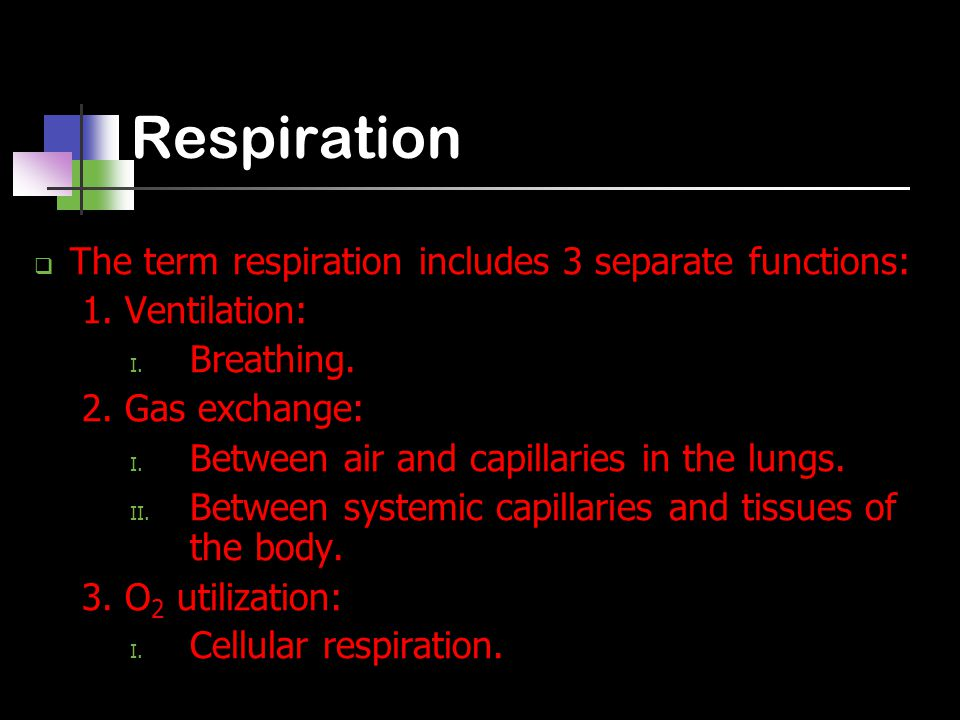 Respiration  The term respiration includes 3 separate functions: 1.