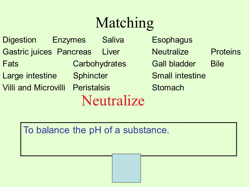 Matching Digestion EnzymesSaliva Esophagus Gastric juices PancreasLiver Neutralize Proteins Fats Carbohydrates Gall bladder Bile Large intestine SphincterSmall intestine Villi and Microvilli PeristalsisStomach Neutralize To balance the pH of a substance.