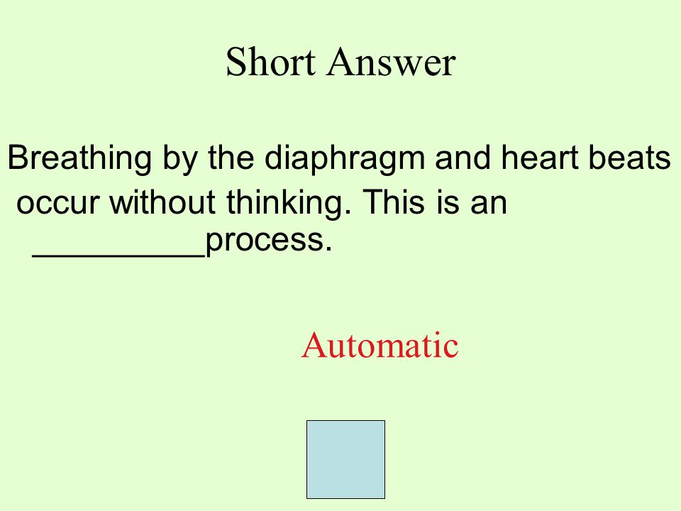 Short Answer Breathing by the diaphragm and heart beats occur without thinking. This is an _________process. Automatic