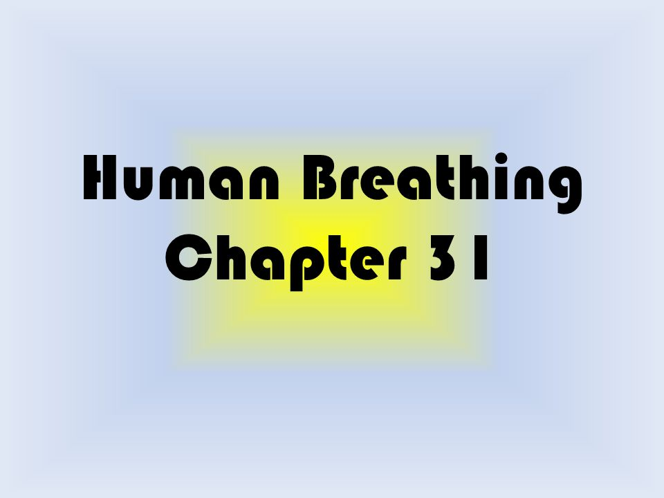 Human Breathing Chapter 31