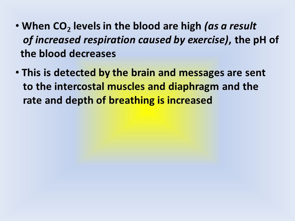 When CO 2 levels in the blood are high (as a result of increased respiration caused by exercise), the pH of the blood decreases This is detected by the brain and messages are sent to the intercostal muscles and diaphragm and the rate and depth of breathing is increased