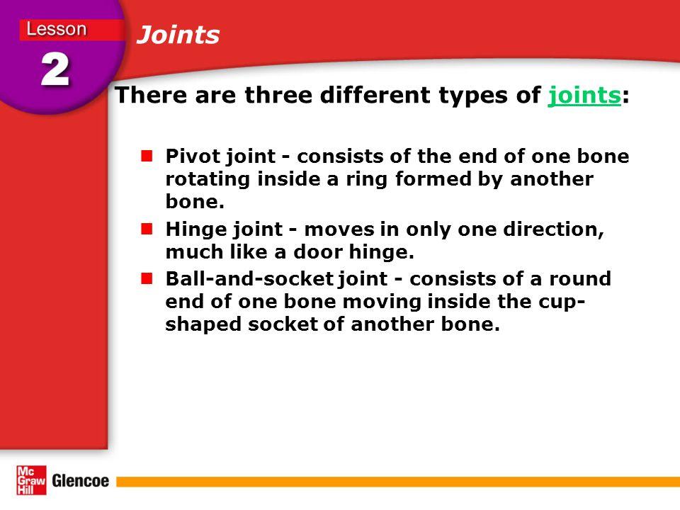 The Skeletal System Pivot joint (neck) Hinge joint (elbow) Ball-and-socket joint (hip) Skull Clavicle (collar bone) Rib cage Humerus Radius Ulna Vertebrae (Spine) Pelvis Femur Patella (knee cap) Tibia Fibula