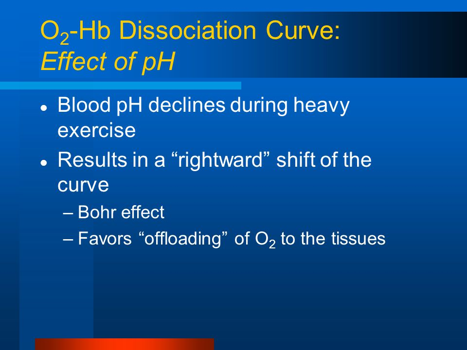 O 2 -Hb Dissociation Curve: Effect of pH Blood pH declines during heavy exercise Results in a rightward shift of the curve –Bohr effect –Favors offloading of O 2 to the tissues