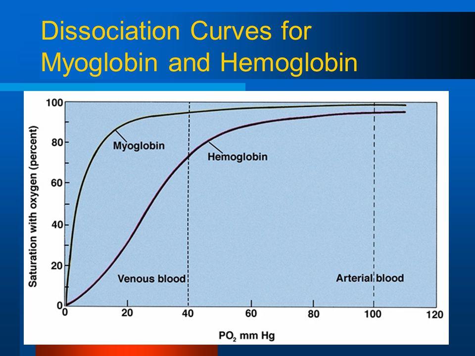Dissociation Curves for Myoglobin and Hemoglobin