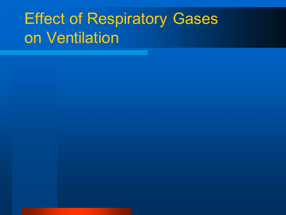 Effect of Respiratory Gases on Ventilation