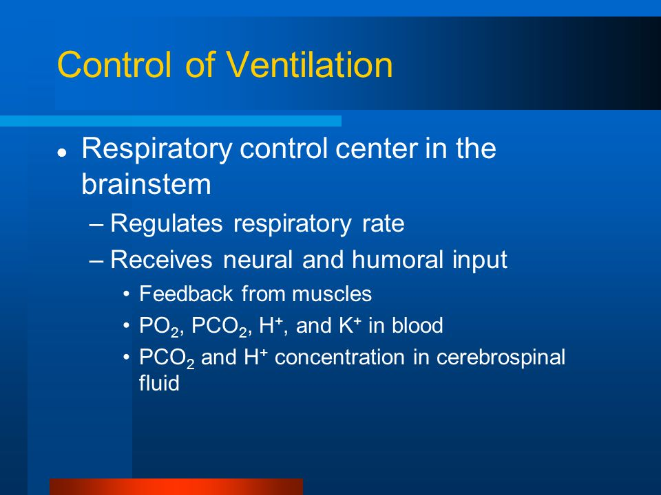 Control of Ventilation Respiratory control center in the brainstem –Regulates respiratory rate –Receives neural and humoral input Feedback from muscles PO 2, PCO 2, H +, and K + in blood PCO 2 and H + concentration in cerebrospinal fluid