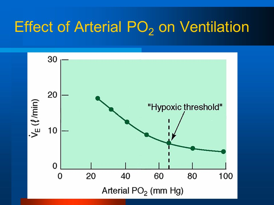 Effect of Arterial PO 2 on Ventilation