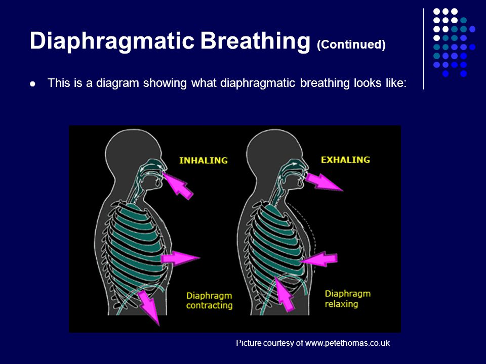 Diaphragmatic Breathing Also known as breathing from the diaphragm and abdominal breathing , is a technique which allows singers to sing with much greater efficiency and control.