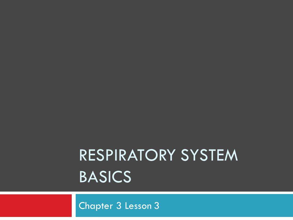 RESPIRATORY SYSTEM BASICS Chapter 3 Lesson 3