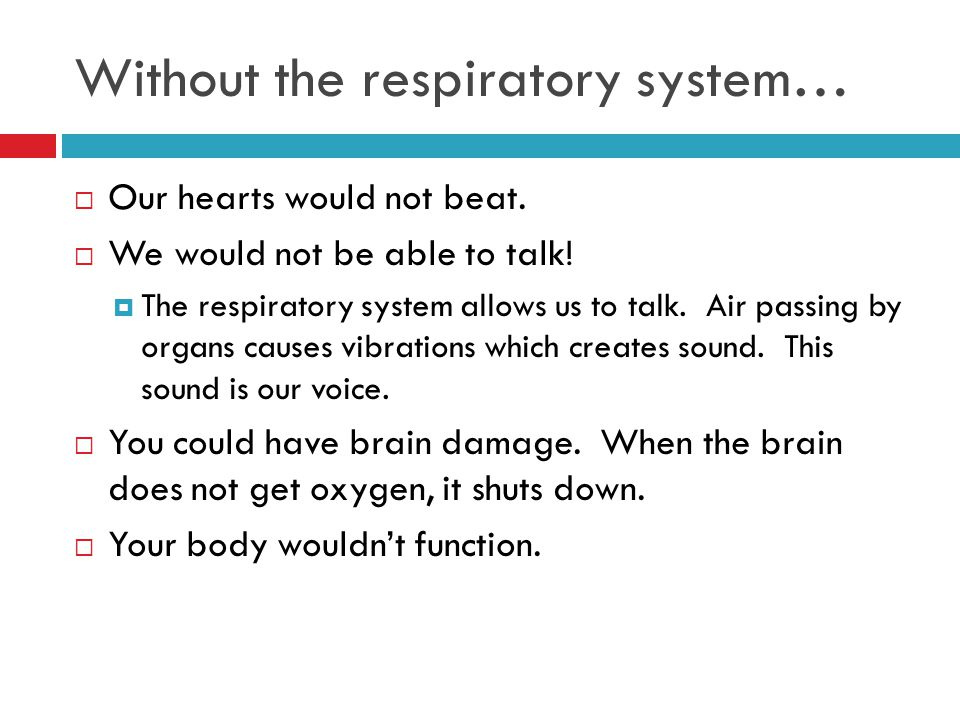 Without the respiratory system…  Our hearts would not beat.  We would not be able to talk!  The respiratory system allows us to talk. Air passing b