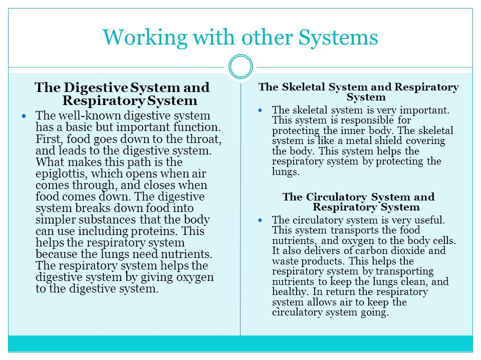 Working with other Systems The Digestive System and Respiratory System The well-known digestive system has a basic but important function.