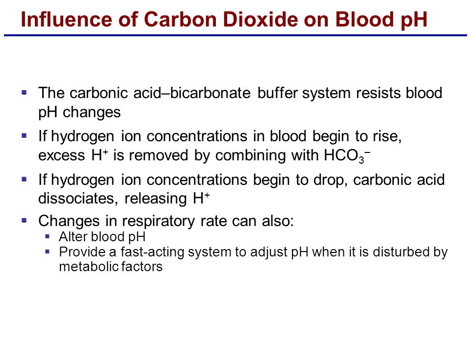  The carbonic acid–bicarbonate buffer system resists blood pH changes  If hydrogen ion concentrations in blood begin to rise, excess H + is removed