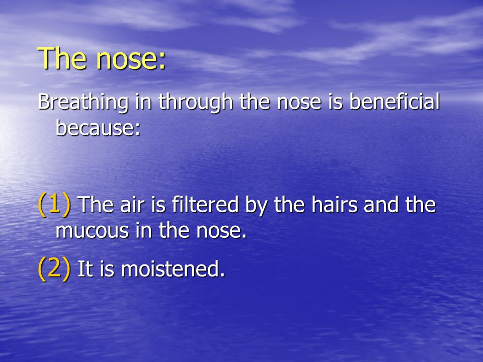The nose: Breathing in through the nose is beneficial because: (1) The air is filtered by the hairs and the mucous in the nose.