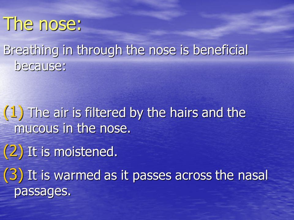 The nose: Breathing in through the nose is beneficial because: (1) The air is filtered by the hairs and the mucous in the nose. (2) It is moistened.