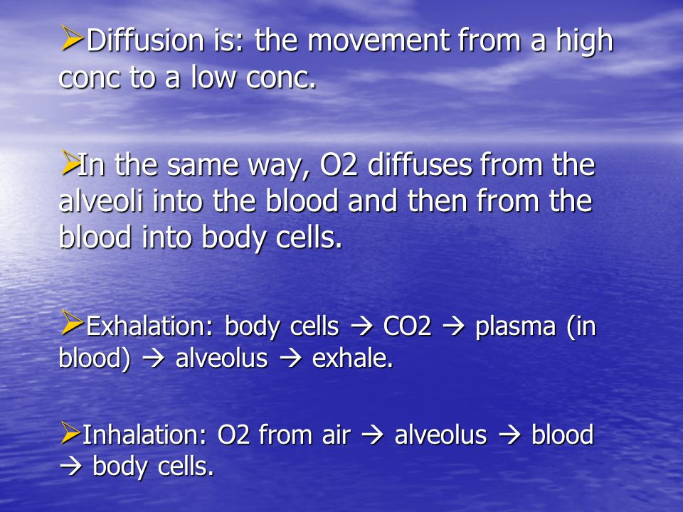 Gaseous exchange = diffusion!!!  C C C CO2 and H2O diffuse out of cells and into the blood because the cytoplasm has a high conc of CO2 and H2O co