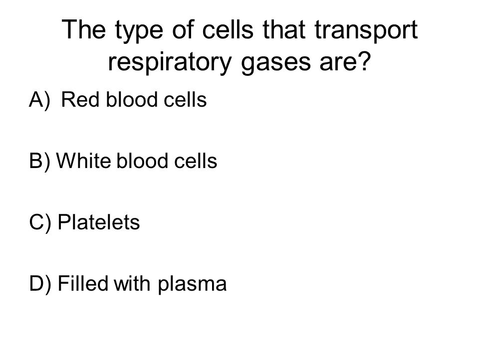 The type of cells that transport respiratory gases are.