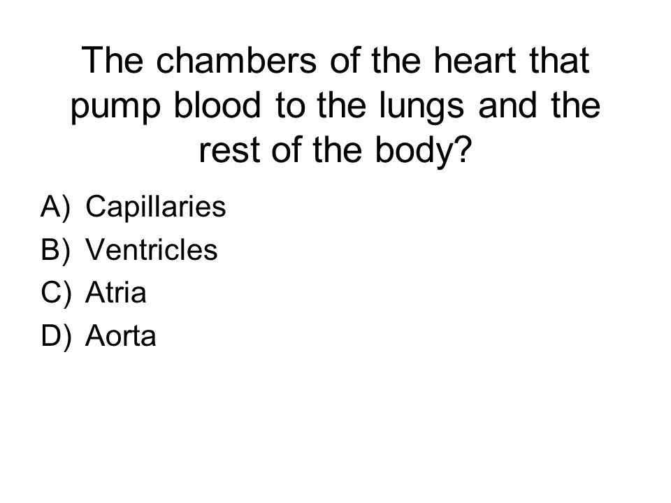 The chambers of the heart that pump blood to the lungs and the rest of the body.