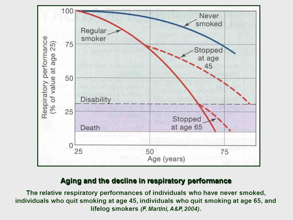 Aging and the decline in respiratory performance The relative respiratory performances of individuals who have never smoked, individuals who quit smoking at age 45, individuals who quit smoking at age 65, and lifelog smokers (F.