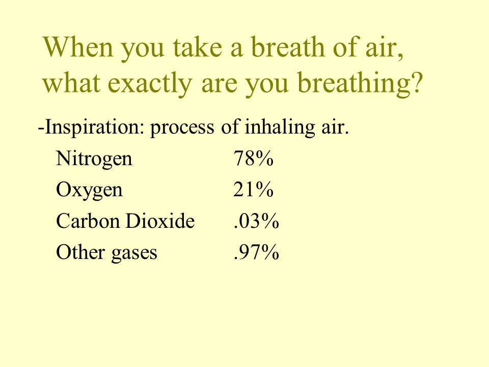When you take a breath of air, what exactly are you breathing? -Inspiration: process of inhaling air. Nitrogen78% Oxygen21% Carbon Dioxide.03% Other g