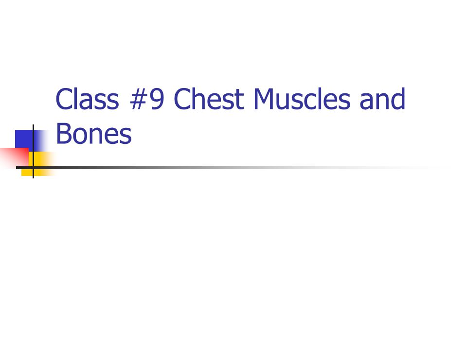 Class #9 Chest Muscles and Bones