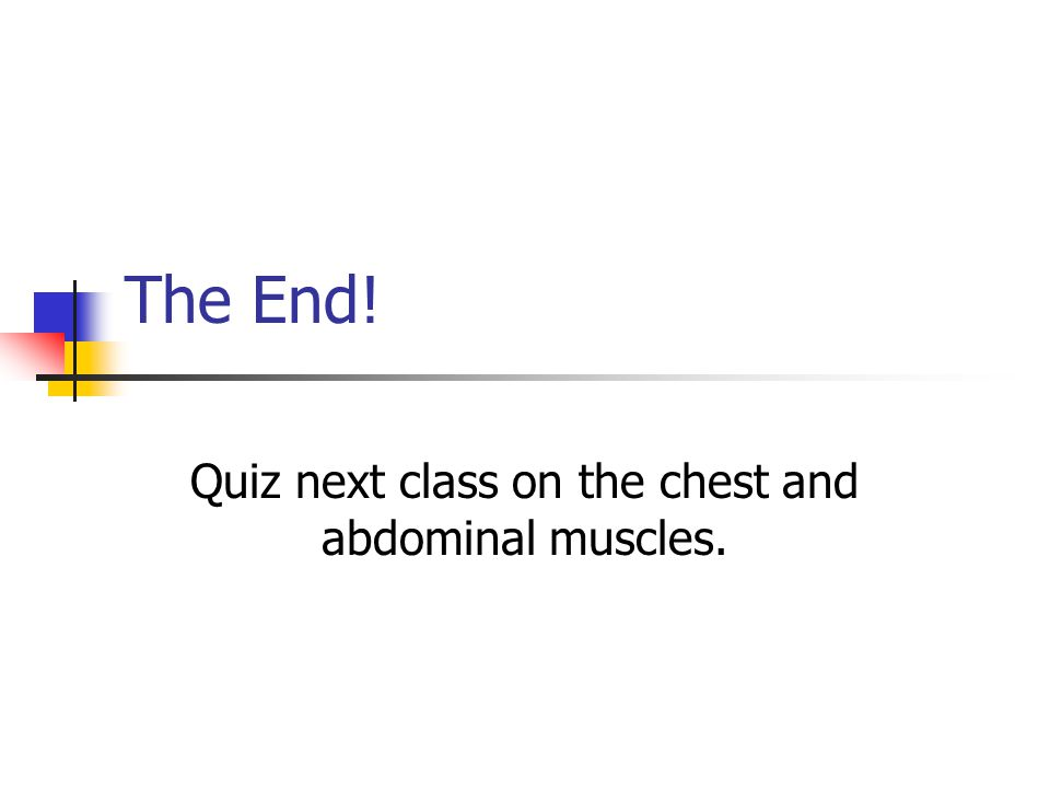 The End! Quiz next class on the chest and abdominal muscles.