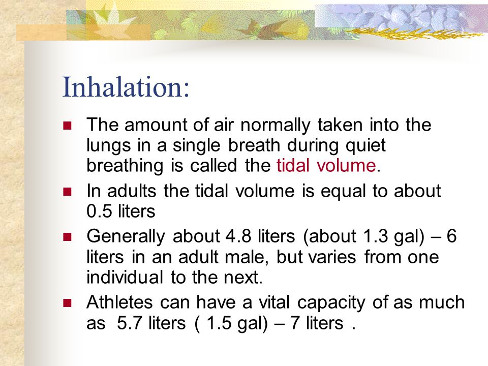 The amount of air normally taken into the lungs in a single breath during quiet breathing is called the tidal volume. In adults the tidal volume is eq