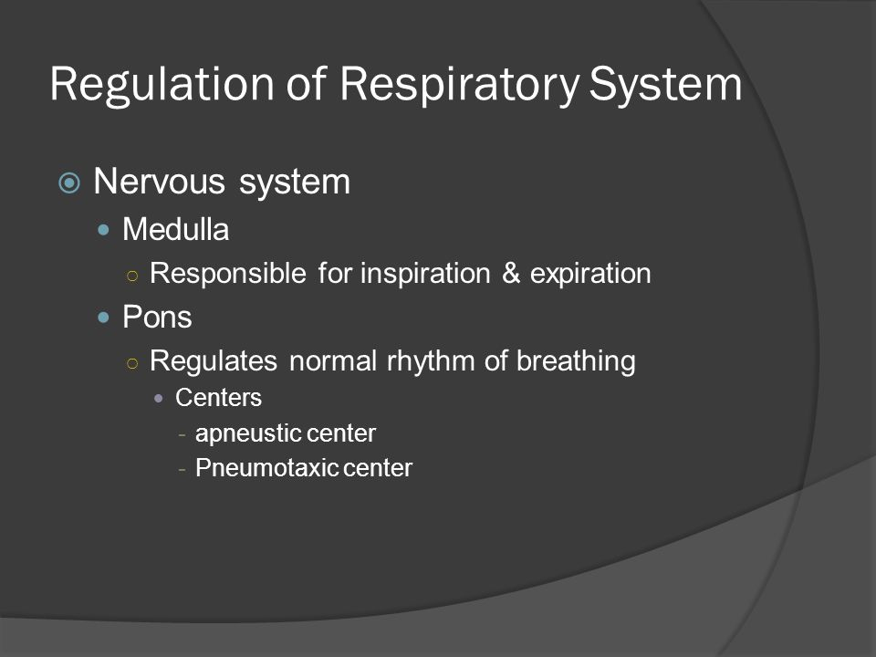 Regulation of Respiratory System  Nervous System Chemoreceptors ○ Located in medulla, aortic bodies & carotid bodies ○ Detect changes in pH & blood gas levels  Phrenic nerve stimulates the diaphragm