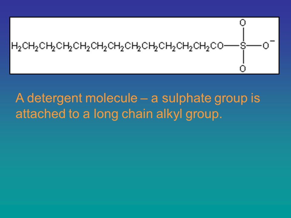 A detergent molecule – a sulphate group is attached to a long chain alkyl group.
