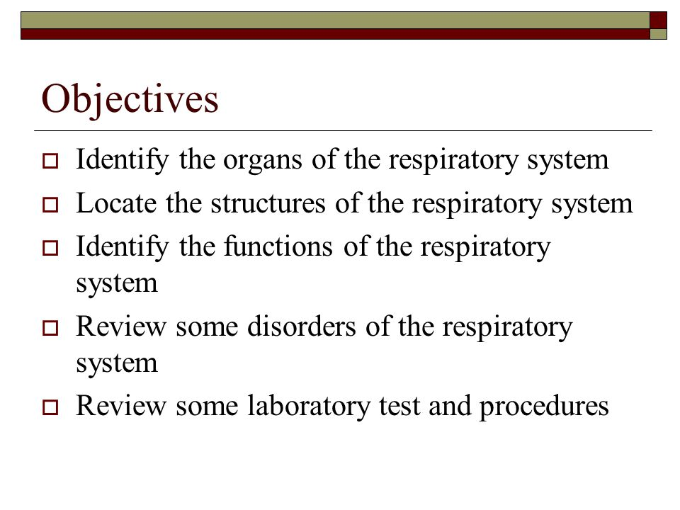 Objectives  Identify the organs of the respiratory system  Locate the structures of the respiratory system  Identify the functions of the respiratory system  Review some disorders of the respiratory system  Review some laboratory test and procedures