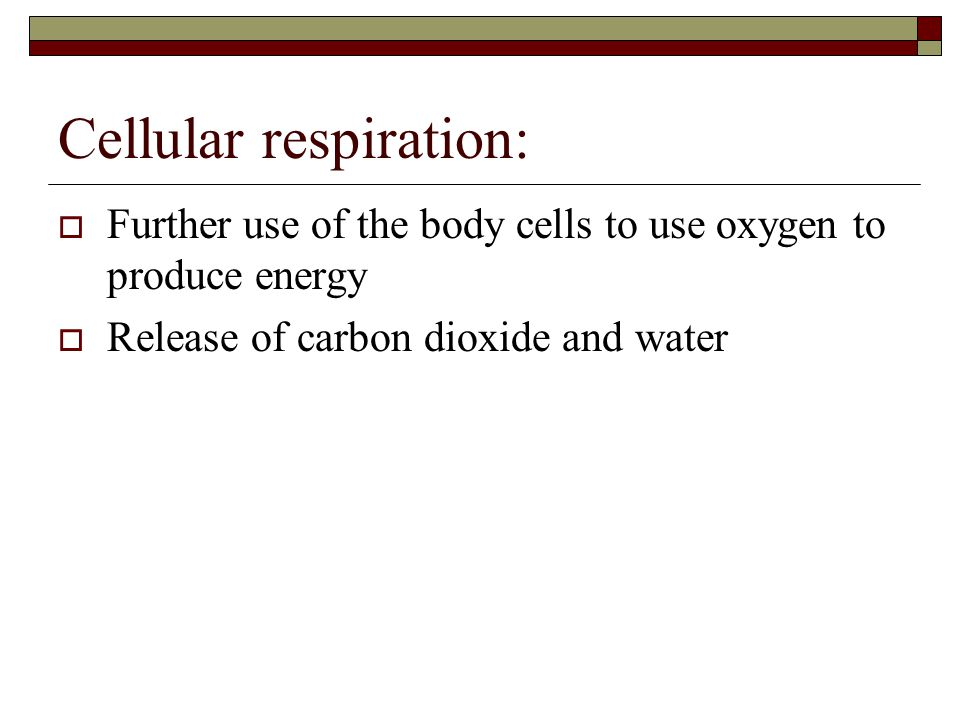 Cellular respiration:  Further use of the body cells to use oxygen to produce energy  Release of carbon dioxide and water