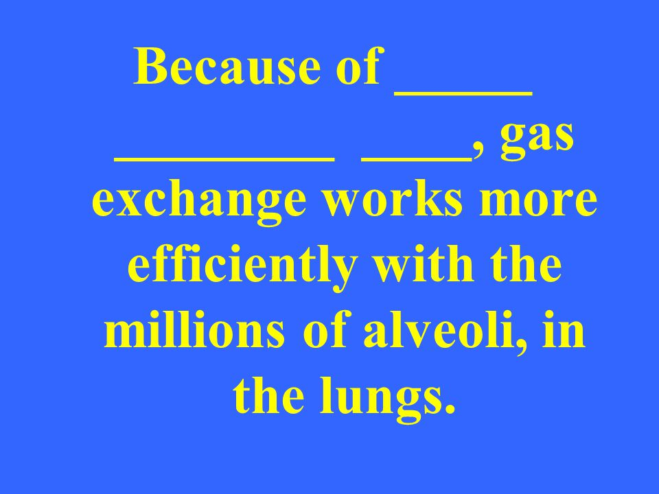 The waste products (CO2, H2O, Heat) Are exhaled to make room in the body for what we need.