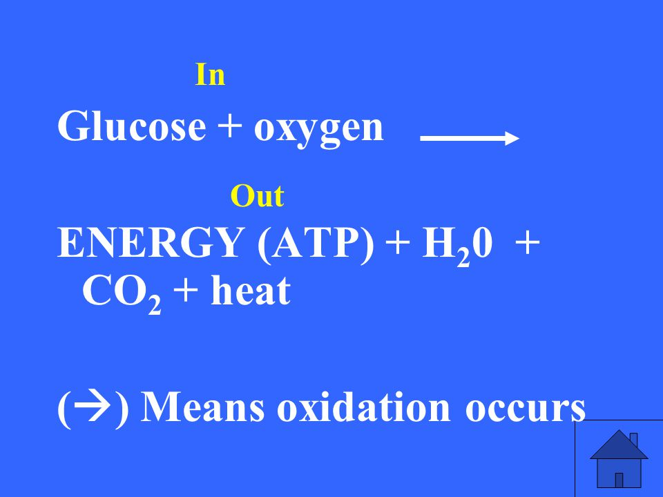 What is the recipe (chemical equation) for cellular respiration