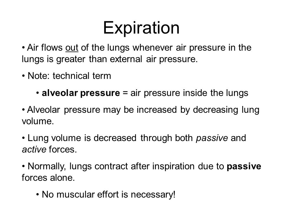 Expiration Air flows out of the lungs whenever air pressure in the lungs is greater than external air pressure.