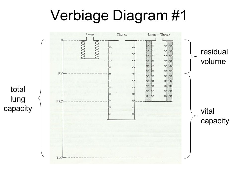 Verbiage Diagram #1 residual volume total lung capacity vital capacity